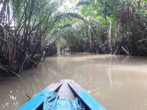 Mekong River Angella Bloody