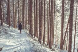angella bloody woman forest winter