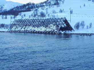 Angella Bloody Tromso Norvege 35