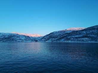 Angella Bloody Tromso Norvege 30