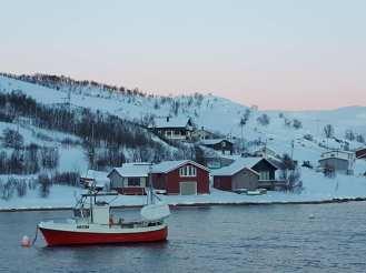 Angella Bloody Tromso Norvege 27