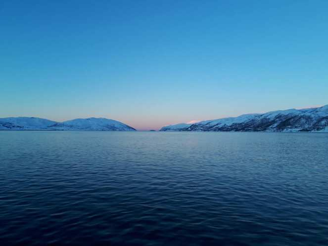 Angella Bloody Tromso Norvege 25