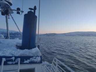 Angella Bloody Tromso 10 Norvege